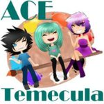 Art & Cosplay Expo 2015 (ACE)