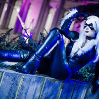 Black Cat Thumbnail